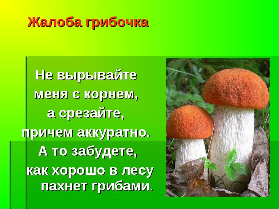 Жалоба грибочка Не вырывайте меня с корнем, а срезайте, причем аккуратно. А т...