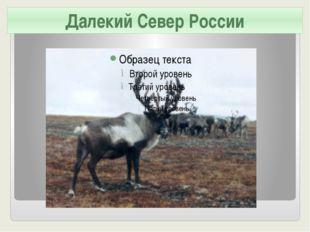 Далекий Север России