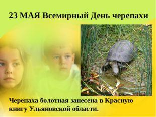 23 МАЯ Всемирный День черепахи Черепаха болотная занесена в Красную книгу Уль