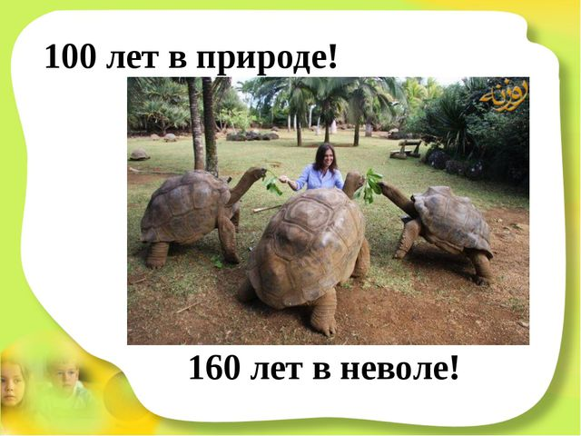 100 лет в природе! 160 лет в неволе!
