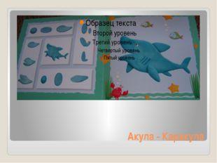 Акула - Каракула