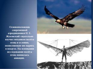 Основоположник современной аэродинамики Н. Е. Жуковский тщательно изучил меха