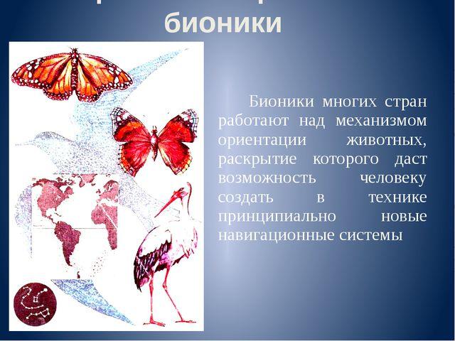 Бионики многих стран работают над механизмом ориентации животных, раскрытие...