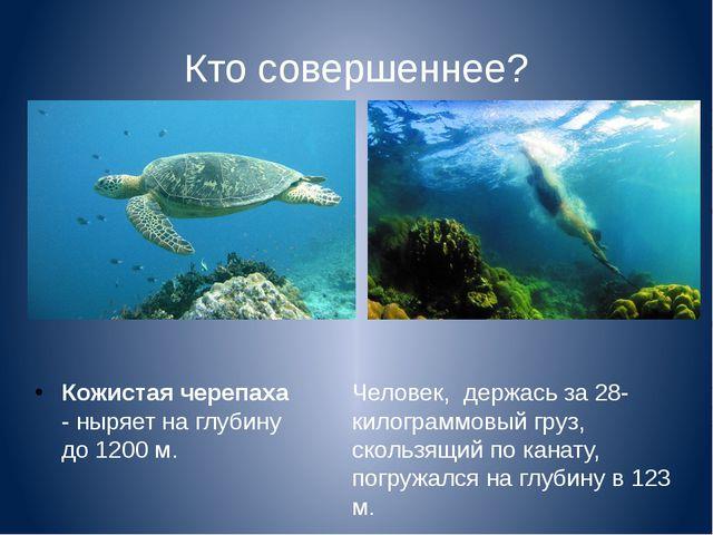 Кто совершеннее? Кожистая черепаха - ныряет на глубину до 1200 м. Человек, де...