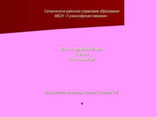 Селенгинское районное управление образования МБОУ «Гусиноозёрская гимназия» М