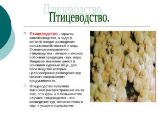 Птицеводство - отрасль животноводства, в задачу которой входит разведение сел
