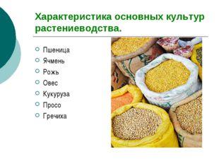 Характеристика основных культур растениеводства. Пшеница Ячмень Рожь Овес Кук