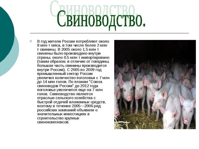 В год жители России потребляют около 8 млн т мяса, в том числе более 2 млн т...