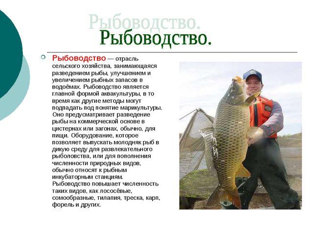 Рыбоводство — отрасль сельского хозяйства, занимающаяся разведением рыбы, улу...