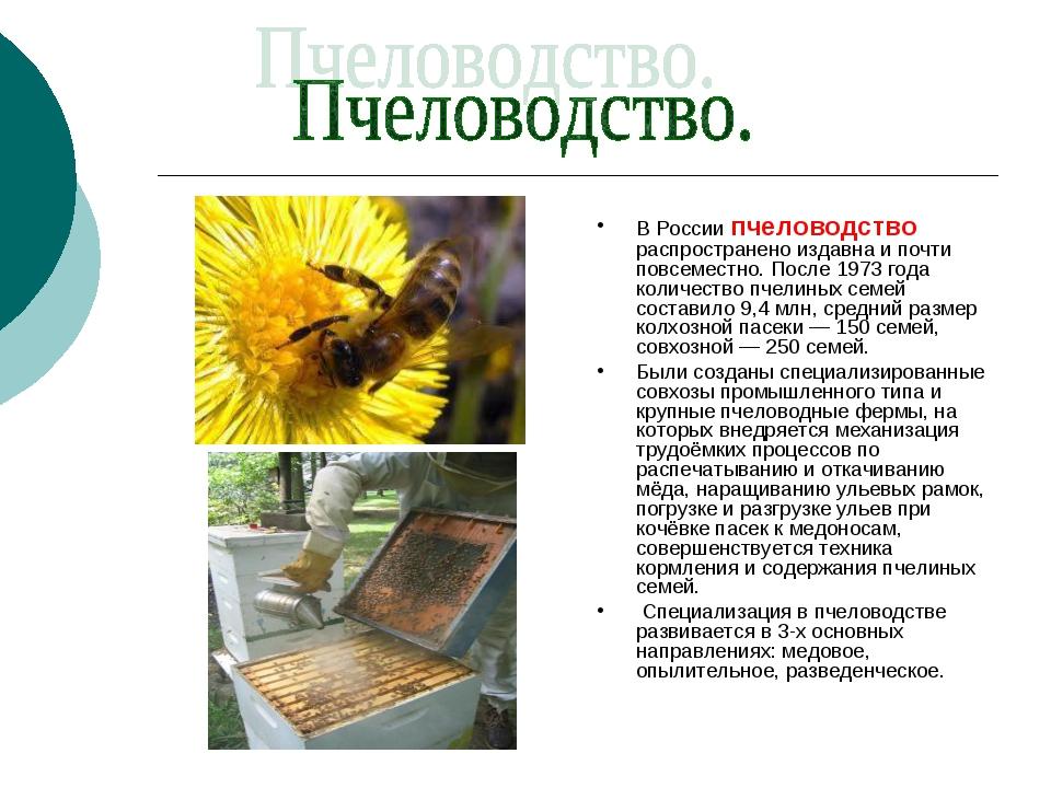В России пчеловодство распространено издавна и почти повсеместно. После 1973...