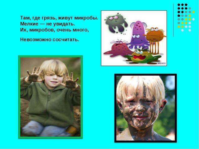 Там, где грязь, живут микробы. Мелкие — не увидать. Их, микробов, очень много...