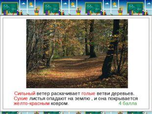 Сильный ветер раскачивает голые ветви деревьев. Сухие листья опадают на земл