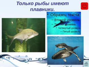 Только рыбы появляются из икры.