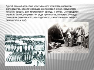 Другой важной отраслью крестьянского хозяйства являлось скотоводство, обеспеч