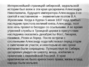 Интереснейшей страницей сибирской, зауральской истории был вояж в эти края це