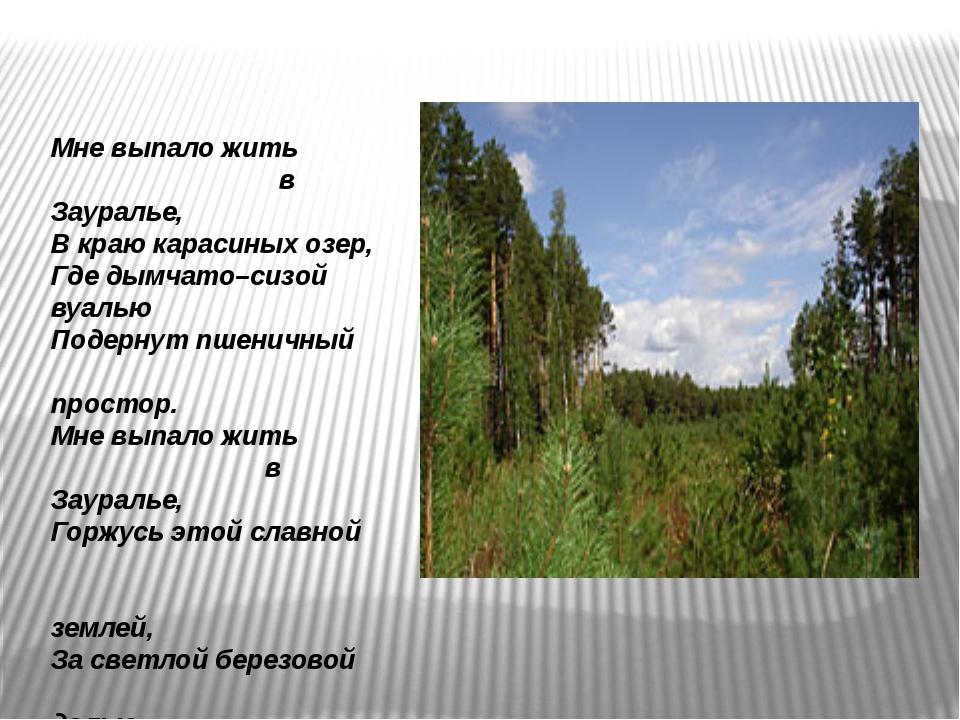 Мне выпало жить в Зауралье, В краю карасиных озер, Где дымчато–сизой вуалью П...