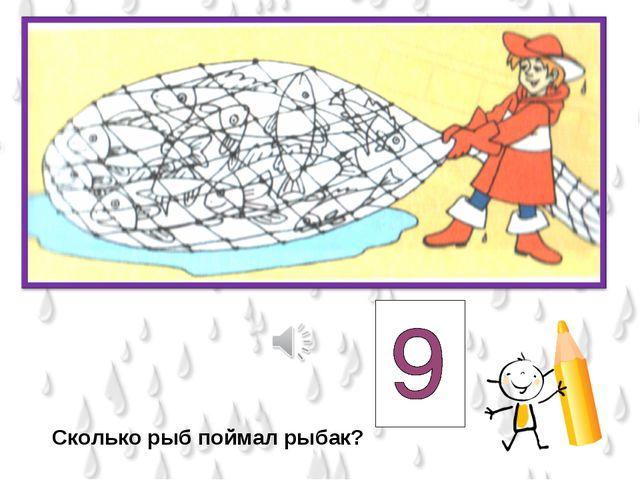 Сколько рыб поймал рыбак?