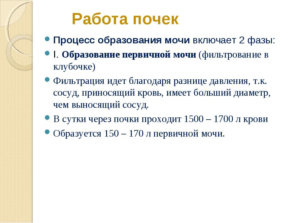 Работа почек Процесс образования мочи включает 2 фазы: I. Образование первичн...