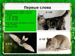 Первые слова a cat a rat a bat Посмотри на этих зверят. Кто они? Давай разбер