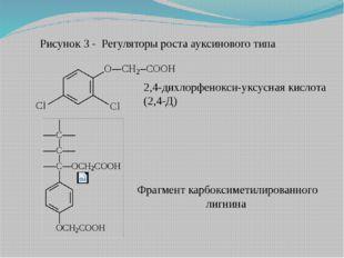 2,4-дихлорфенокси-уксусная кислота (2,4-Д) Фрагмент карбоксиметилированного л