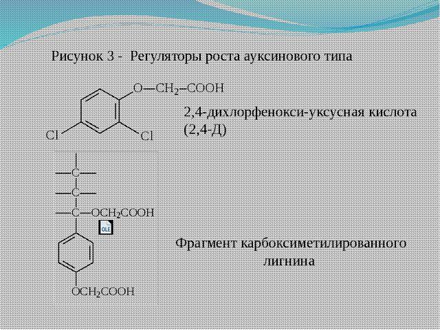 2,4-дихлорфенокси-уксусная кислота (2,4-Д) Фрагмент карбоксиметилированного л...