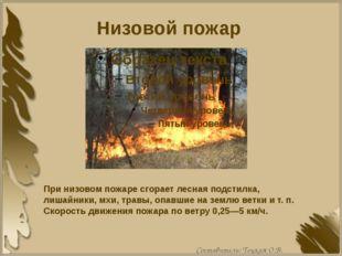 Низовой пожар При низовом пожаре сгорает лесная подстилка, лишайники, мхи, тр