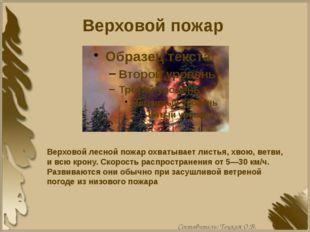 Верховой пожар Верховой лесной пожар охватывает листья, хвою, ветви, и всю кр