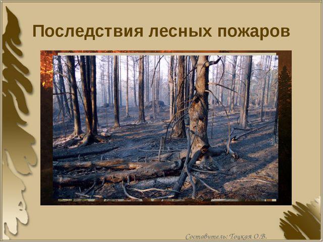 Последствия лесных пожаров Составитель: Тоцкая О.В.