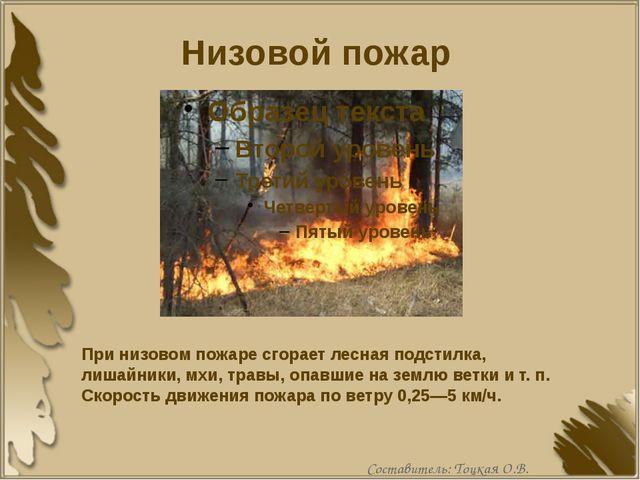Низовой пожар При низовом пожаре сгорает лесная подстилка, лишайники, мхи, тр...