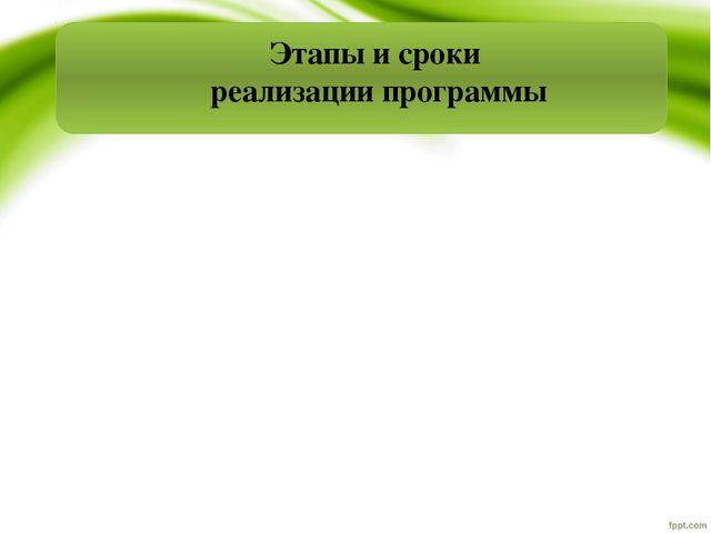 Этапы и сроки реализации программы