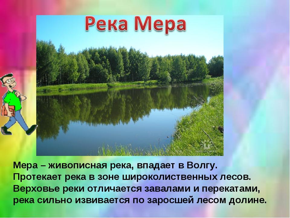 Мера – живописная река, впадает в Волгу. Протекает река в зоне широколиственн...