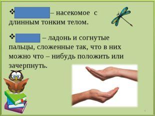 Стрекоза – насекомое с длинным тонким телом. Горсть – ладонь и согнутые пальц
