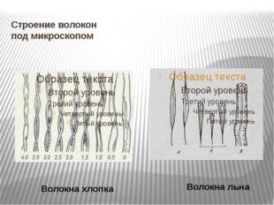 Строение волокон под микроскопом Волокна хлопка Волокна льна