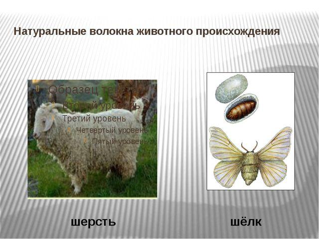 Натуральные волокна животного происхождения шерсть шёлк