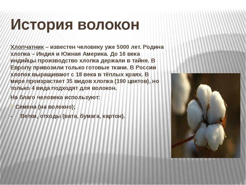 История волокон Хлопчатник – известен человеку уже 5000 лет. Родина хлопка –...