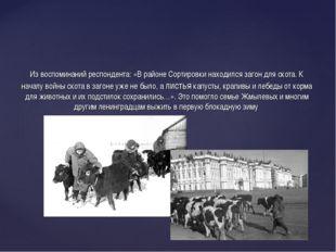 Из воспоминаний респондента: «В районе Сортировки находился загон для скота