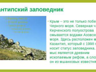 Казантипский заповедник Крым – это не только побережье Черного моря. Северная