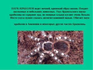 ПАУК-КРАБОЛОВ ведет ночной, одинокий образ жизни. Поедает насекомых и небольш