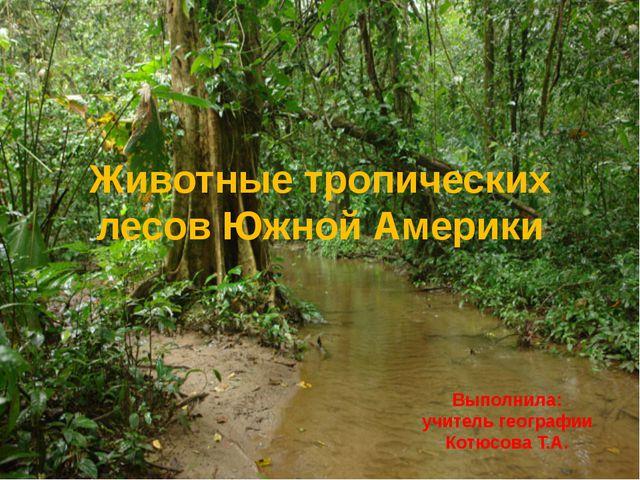Животные тропических лесов Южной Америки Выполнила: учитель географии Котюсов...