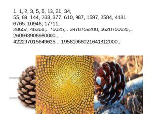 1, 1, 2, 3, 5, 8, 13, 21, 34, 55, 89, 144, 233, 377, 610, 987, 1597, 2584, 41