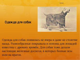 Одежда для собак Одежда для собак появилась не вчера и даже не столетие назад