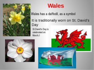 Wales Wales has a daffodil, as a symbol It is traditionally worn on St. Davi