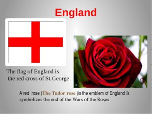 England A red rose (The Tudor rose )is the emblem of England It symbolizes th