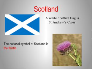 Scotland A white Scottish flag is St Andrew's Cross The national symbol of Sc