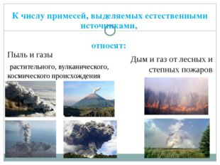 К числу примесей, выделяемых естественными источниками, относят: Пыль и газы