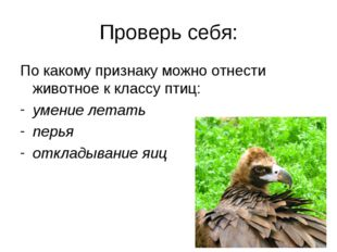 Проверь себя: По какому признаку можно отнести животное к классу птиц: умение