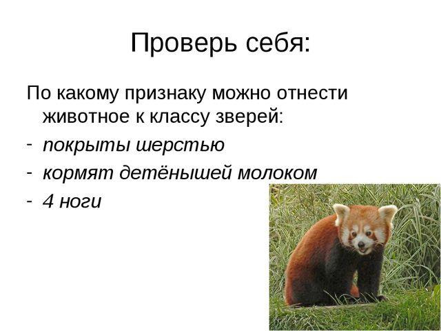 Проверь себя: По какому признаку можно отнести животное к классу зверей: покр...