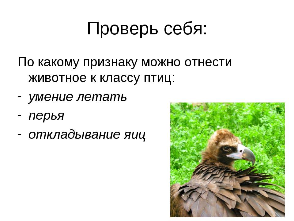 Проверь себя: По какому признаку можно отнести животное к классу птиц: умение...