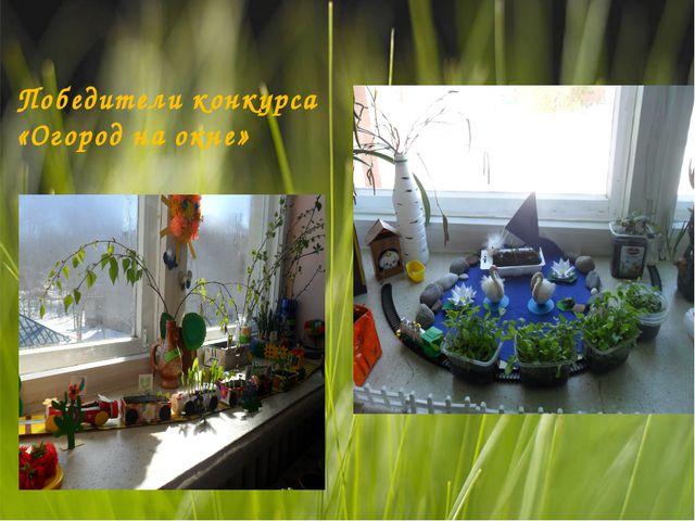 Победители конкурса «Огород на окне»