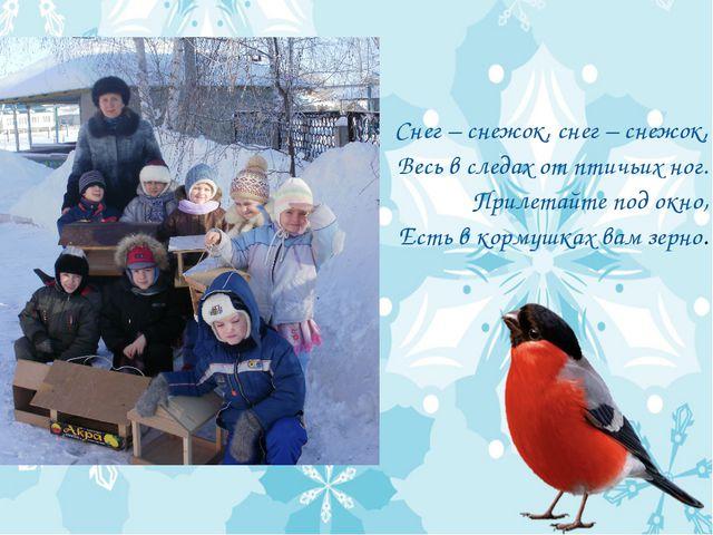 Снег – снежок, снег – снежок, Весь в следах от птичьих ног. Прилетайте под ок...